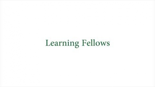 Learning Fellows Video