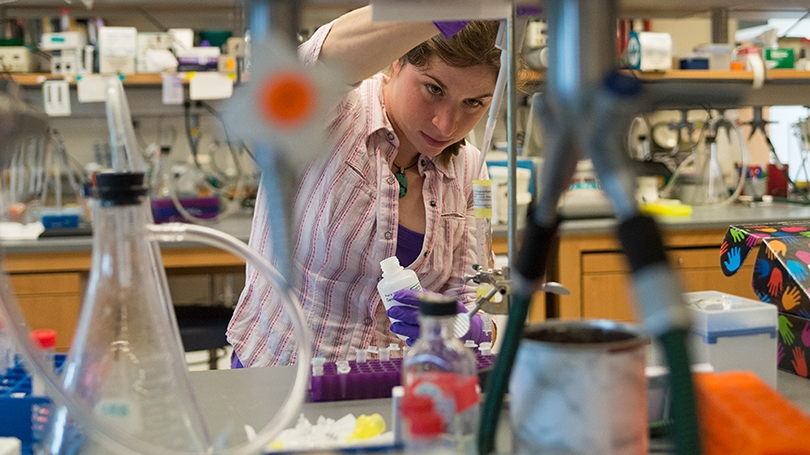 a female grad student working in a science lab