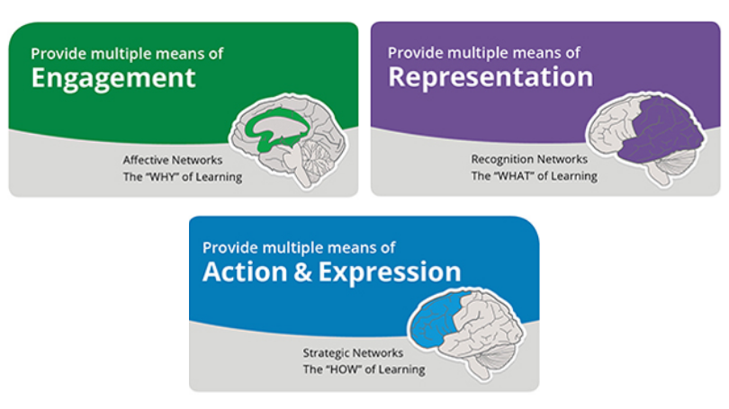 The principles of Universal Design in Education include providing multiple means of engagement (the WHY of learning), representation (the WHAT of learning), and action and expression (the HOW of learning). Graphic shows this text contained in three boxes.